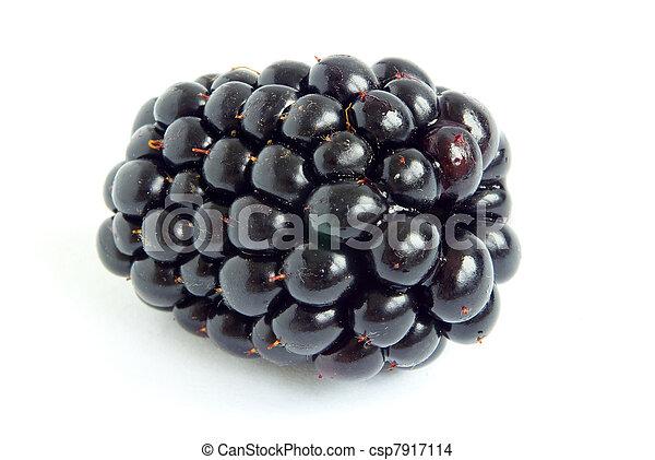 blackberry - csp7917114