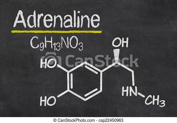 Blackboard with the chemical formula of Adrenaline - csp22450963