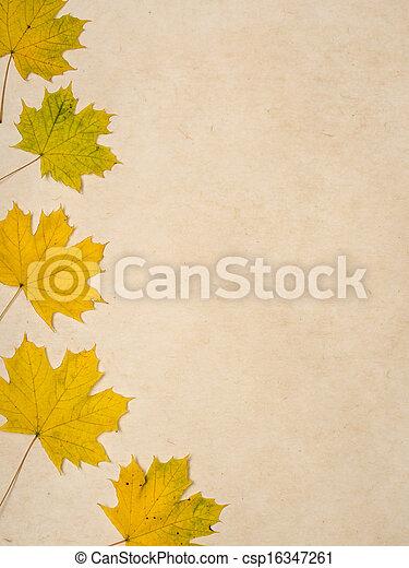 blad, achtergrond, herfst - csp16347261