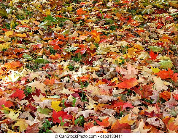bladeren, achtergrond, herfst - csp0133411