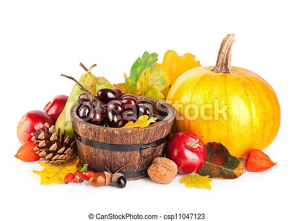 bladeren, herfstachtig, gele, vruchten, oogsten, groentes - csp11047123