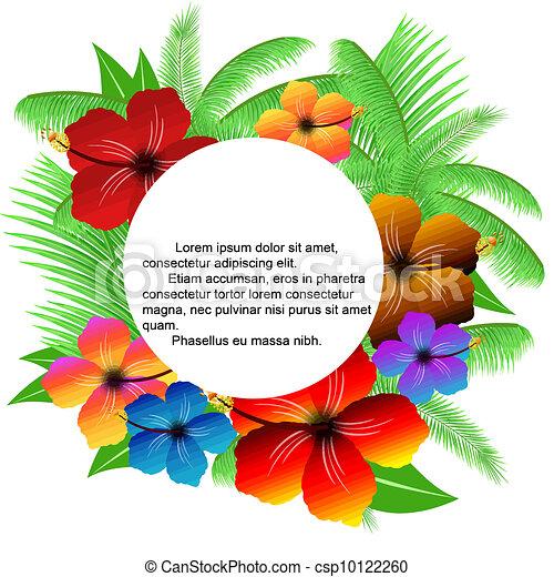 bladeren, palm, frame, hibiscuses - csp10122260