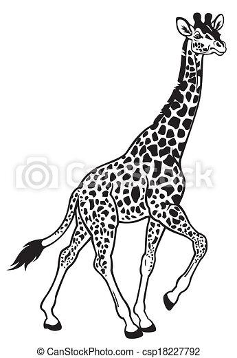 Blanc Girafe Noir Image
