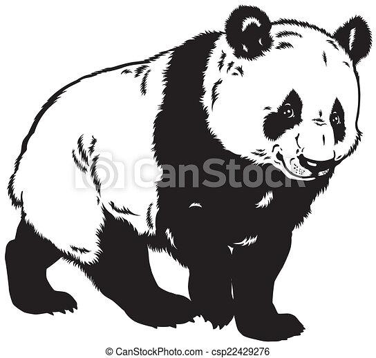 Blanc Noir Panda