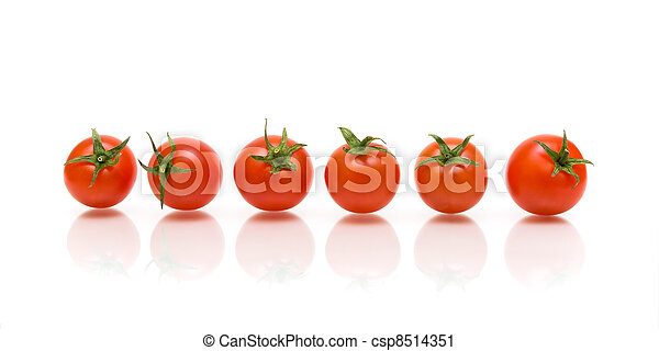 blanc, six, reflet, fond, tomates - csp8514351