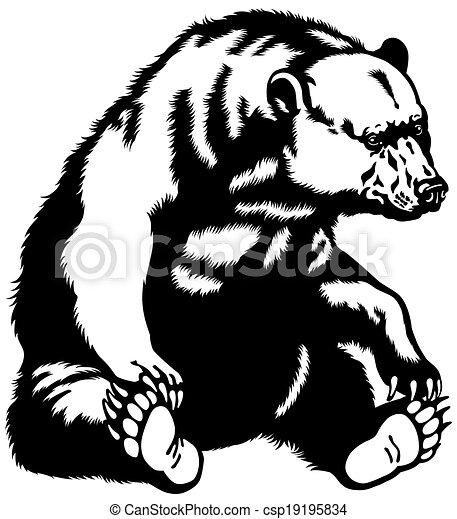 Oso sentado blanco negro - csp19195834
