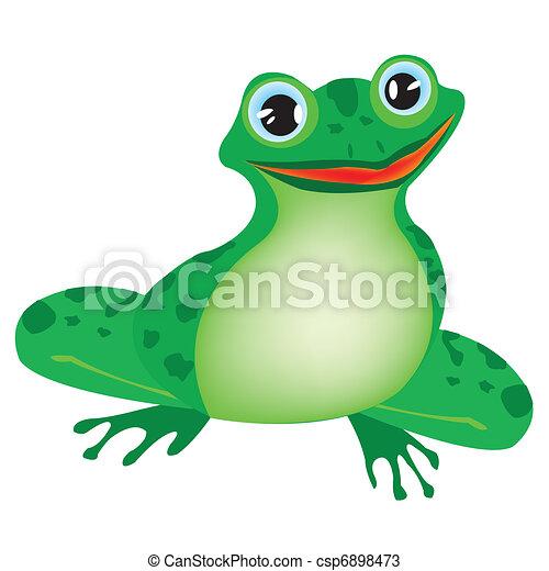 Rana verde en fondo blanco - csp6898473
