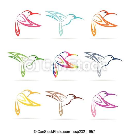 blanco, vector, grupo, plano de fondo, colibrí - csp23211957