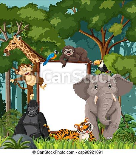 Blank banner in the rainforest scene with wild animals - csp90921091