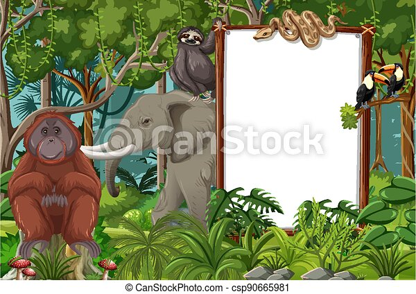 Blank banner in the rainforest scene with wild animals - csp90665981