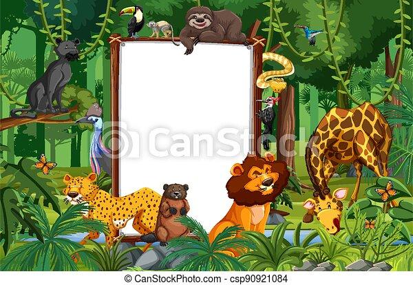 Blank banner in the rainforest scene with wild animals - csp90921084
