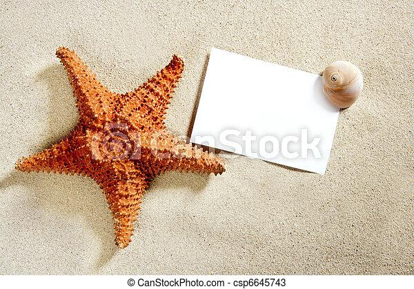 blank paper beach sand starfish shells summer - csp6645743