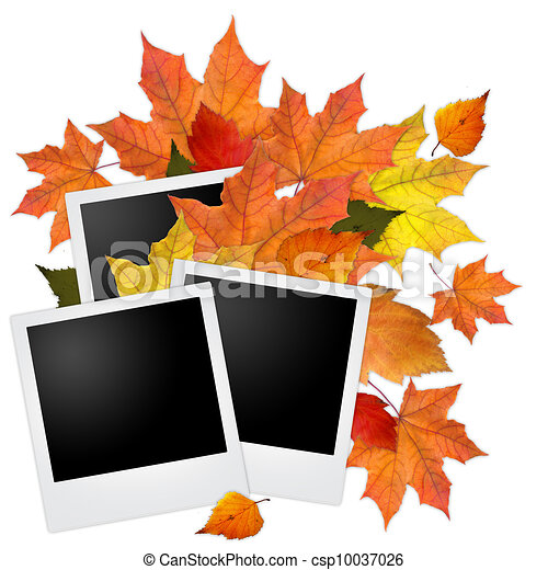 Blank photo frame with autumn leaves on white - csp10037026
