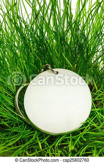 Blank round badge in green grass - csp25602760
