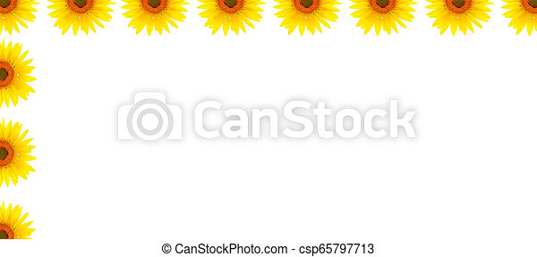 Blank white page decorated with sunflowers - csp65797713