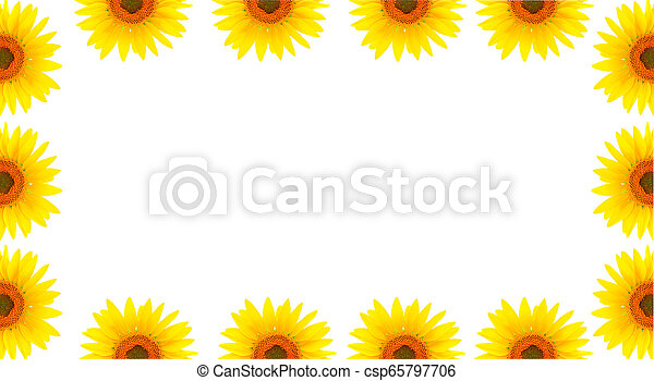 Blank white page decorated with sunflowers - csp65797706
