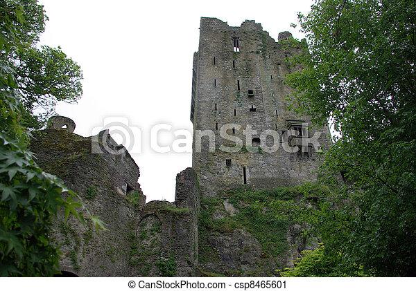 Blarney Castle - csp8465601