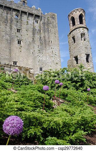 Blarney Castle - csp29772640