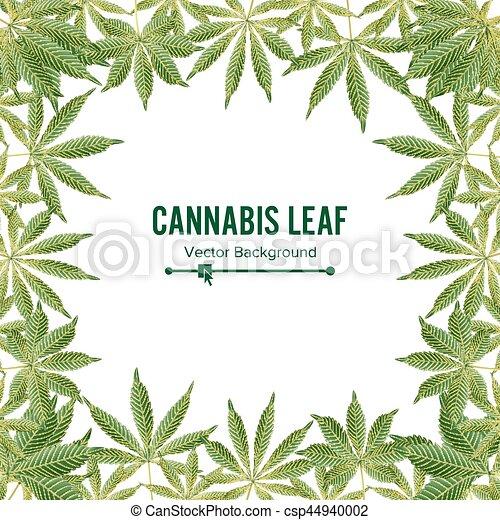 blatt, frame., hintergrund., marihuana, cannabis, vektor, grün - csp44940002