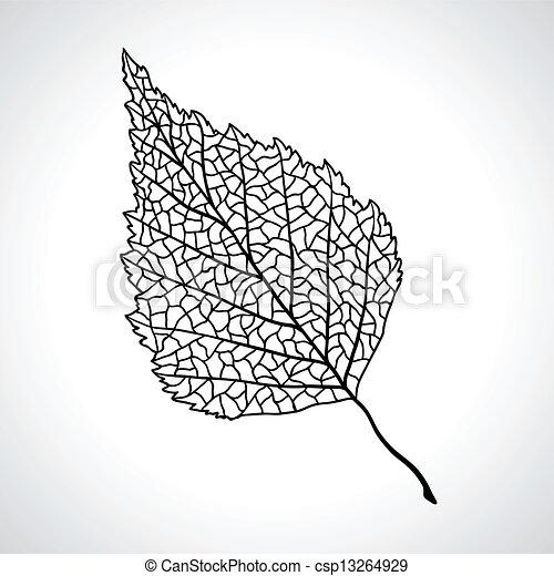 Schwarzes Makroblatt von Birkenbaum isoliert. - csp13264929