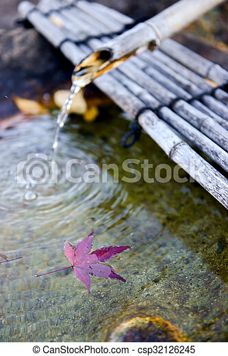 Blatt Japanisches Herbst Brunnen Rotes Bambus Ahorn