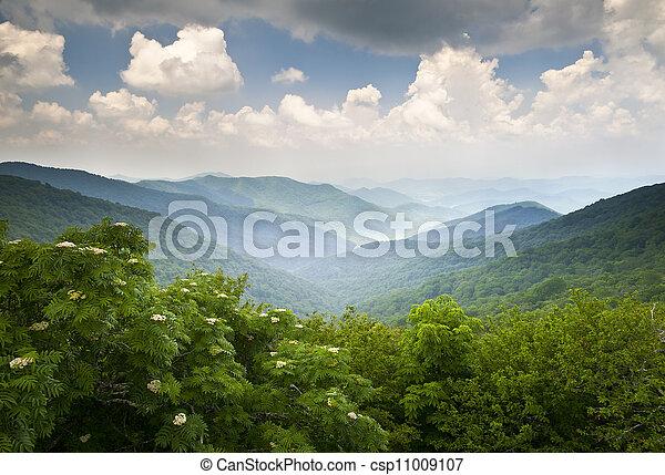 blaue berge, übersehen, bergrücken, sommer, landschaftlich, nc, asheville, landschaftsbild, felsig, allee, gärten, wnc - csp11009107
