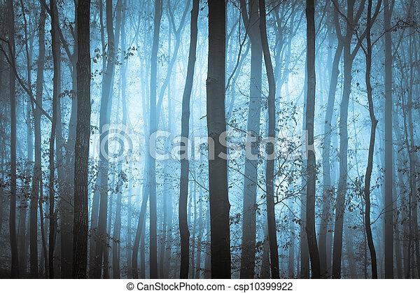 Dunkelblauer, unheimlicher Wald mit Bäumen im Nebel - csp10399922