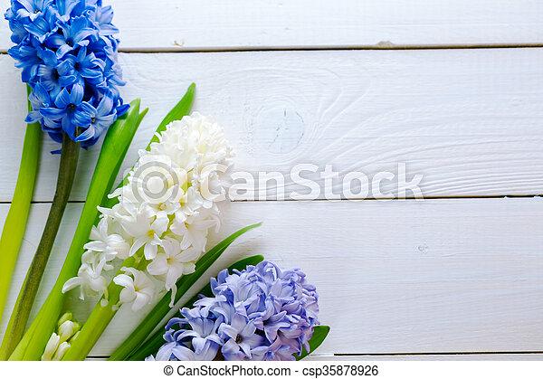 Blaues, hyazinthen, rosa, hintergrund., gemalt, licht,... Stockfoto ...