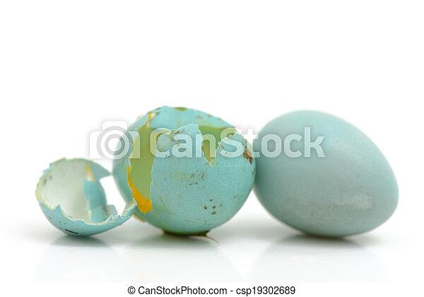 blauwe , broken eieren - csp19302689