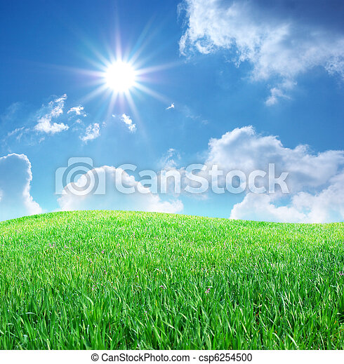 blauwe , gras, hemel, diep - csp6254500