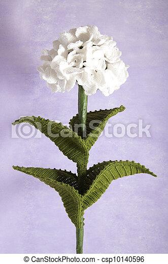 Blauwe Hortensia Bloemen Haken Blauwe Paarse Hortensia
