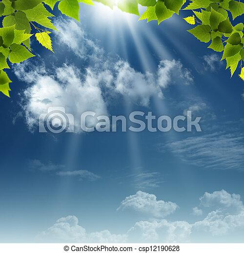 blauwe , natuurlijke , abstract, achtergronden, ontwerp, onder, skies., jouw - csp12190628