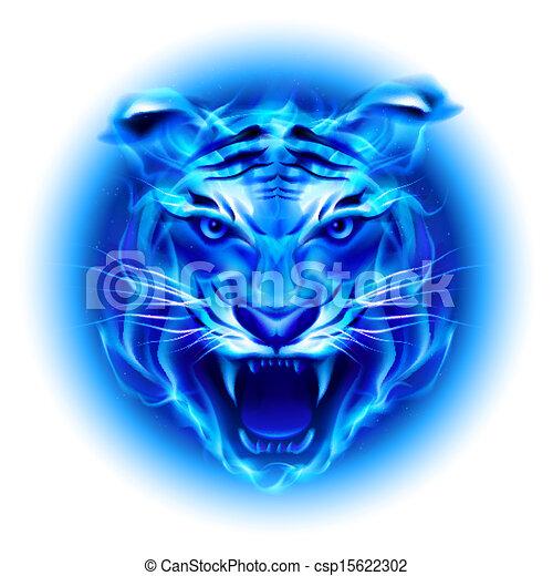 blauwe , vuur, hoofd, tiger. - csp15622302