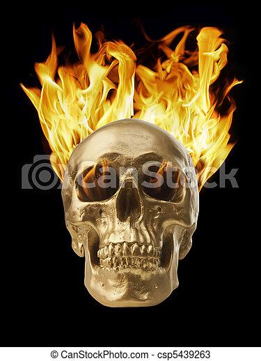 Blazing Skull - csp5439263