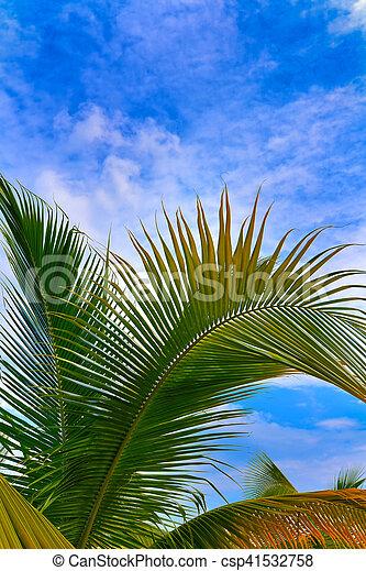 bleu, arbre, paume, ciel, fond - csp41532758