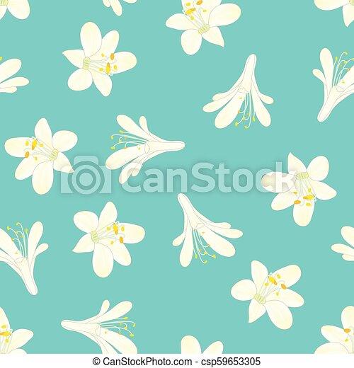 bleu, blanc, agapanthus, neige, fond - csp59653305