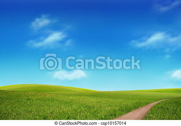 bleu, champ, ciel vert - csp10157014