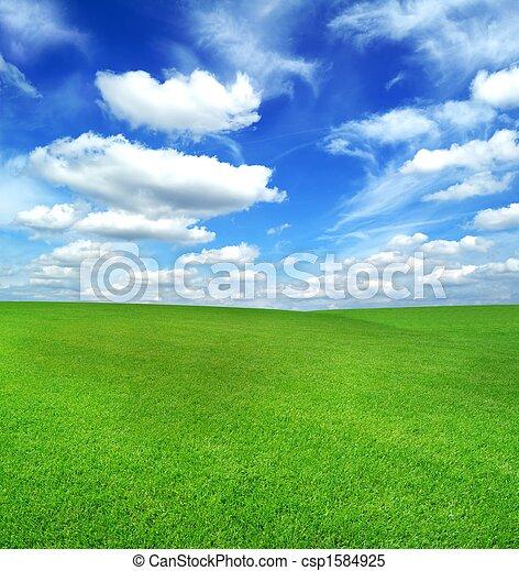 bleu, champ, ciel vert - csp1584925