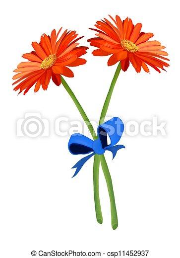 Bleu Deux Orange Fleurs Fraiches Gerbera Ruban Beau Daisys