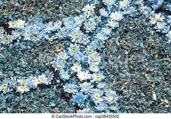 bleu fleurit, bis - csp38435502