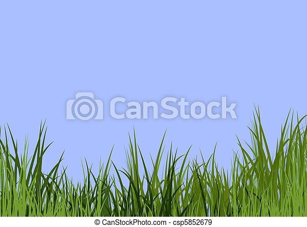 bleu, herbe, ciel, & - csp5852679