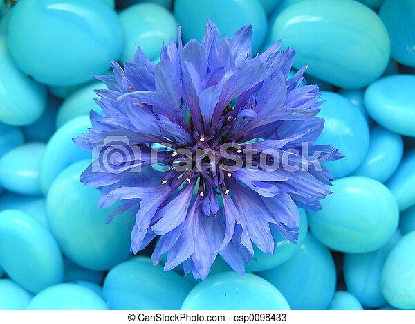 bleu, heureux - csp0098433