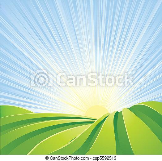 bleu, idyllique, champs, soleil, ciel, rayons, vert - csp5592513
