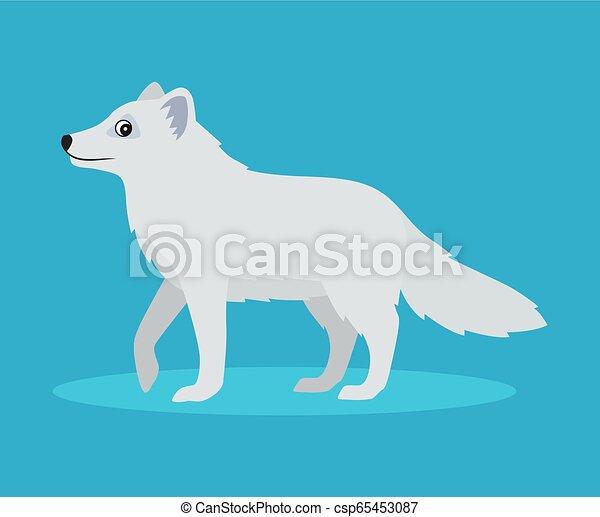bleu, mignon, plat, polaire, à poil, arctique, ou, renard, isolé, illustration, neige, fond, vecteur, bête, sauvage, icône, style. - csp65453087