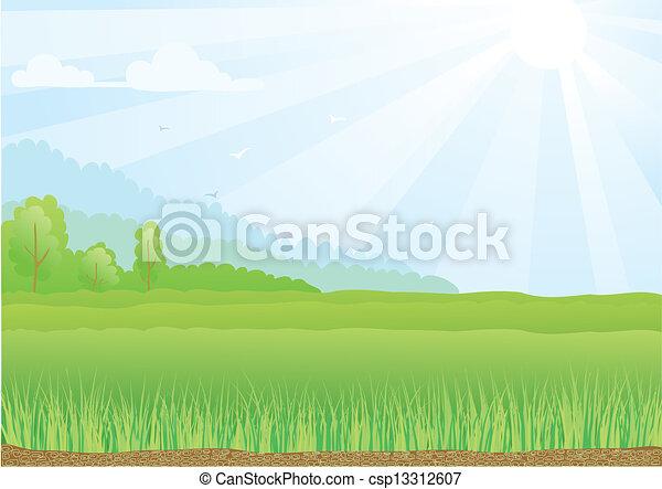 bleu, rayons, sky., soleil, illustration, champ, vert - csp13312607
