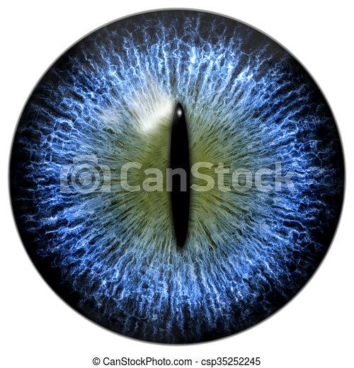 Bleu Reptile Oeil Chat Pupille Etroit Ou