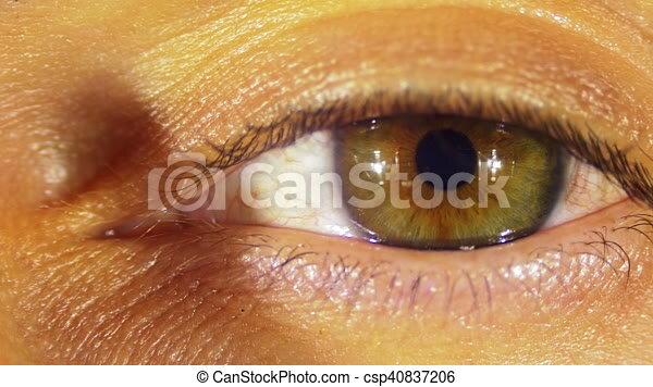 blinks, ojo, humano
