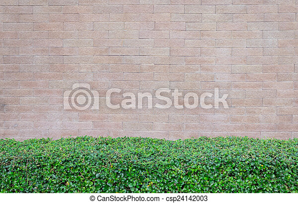 Block wall - csp24142003