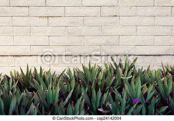 Block wall - csp24142004