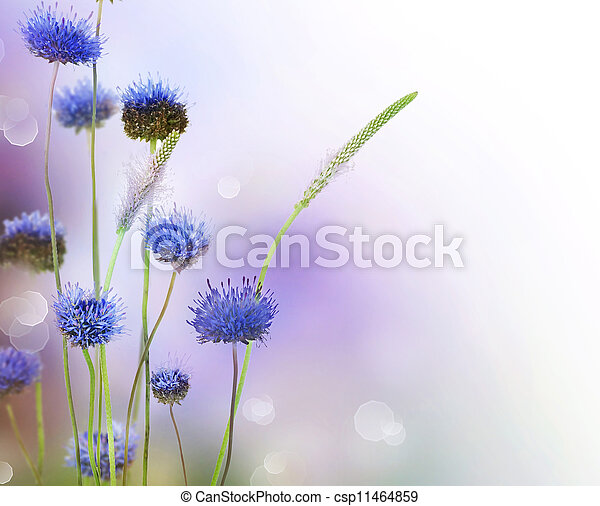 bloemen, abstract, grens, ontwerp - csp11464859